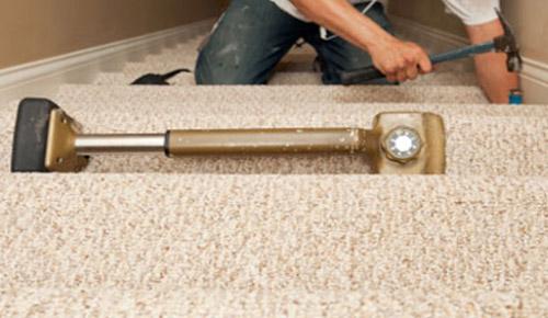 Carpet Bradenton Ideas